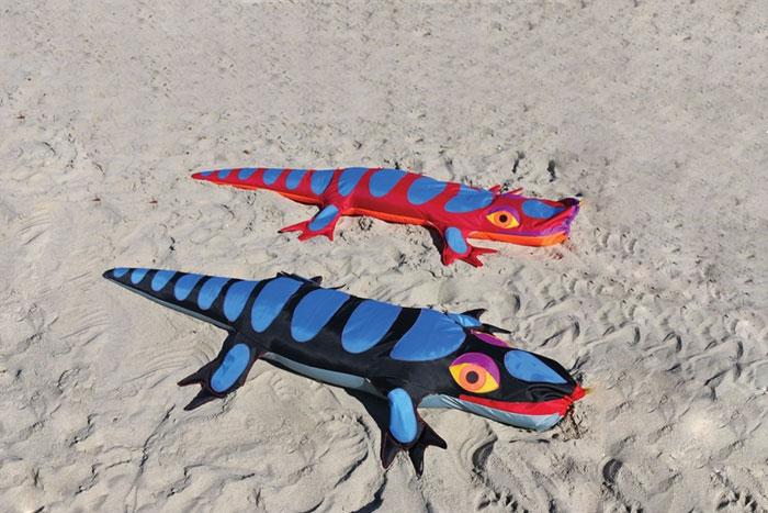 Lizard Sandimal