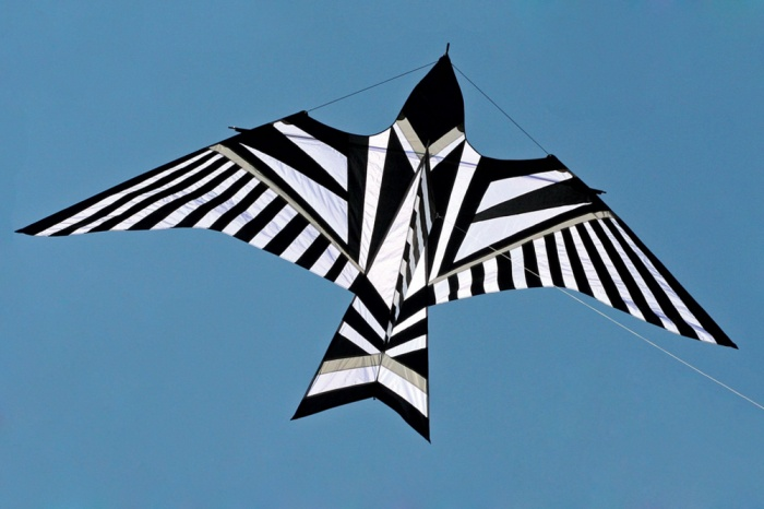 Skybird Black and White