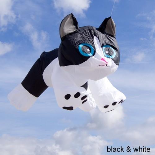 Tabby Kitten schwarz-weiss | 8ft.
