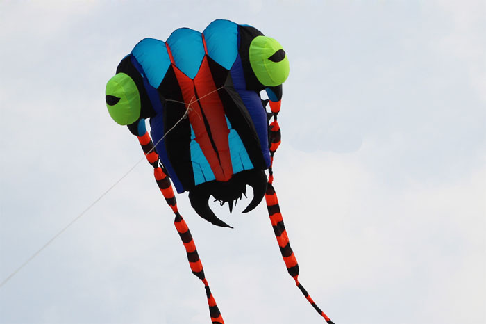 Trilobite Kite 2 blue