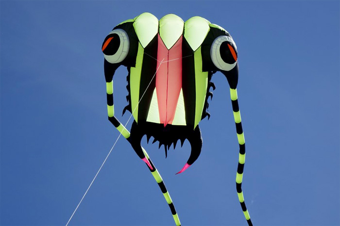 Trilobite Kite 7 grün – schwarz