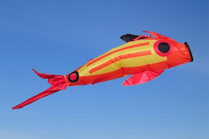 Windsack Fisch