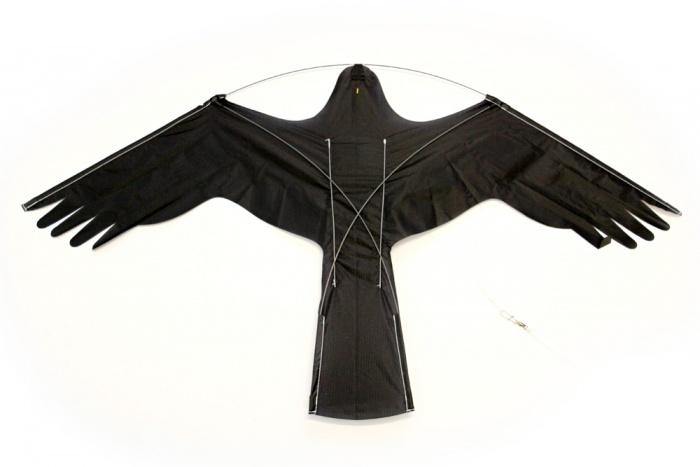metropolis drachen vogelschreck set kx 6m jetzt online kaufen. Black Bedroom Furniture Sets. Home Design Ideas