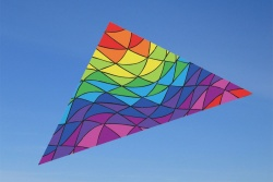 6.5 ft. Delta Rainbow Triangles