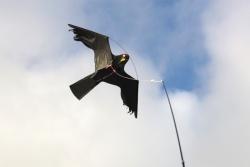 Vogelschreck Set CFK 10m