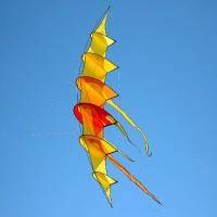 """Bow Kite """"Sunrise"""""""