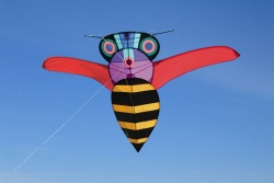 Buzz Bee Kite