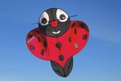Buzzer Bug