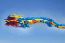 Chinese Dragon Kite 15m