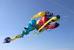 Chinese Dragon Kite 15m