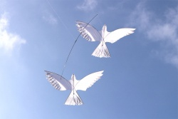 Dove Kite, set of two with pole