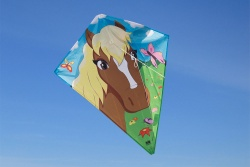 Dream Eddy Horse
