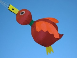 Ducky rot