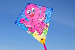 Eddy Octopus