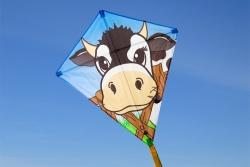 Eddy Cow