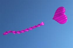 Fliegendes Herz pink