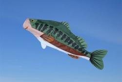 Large Mouth Bass Fisch Windsack