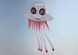 Large Jellyfish Kite