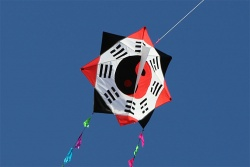 Octagon Kite