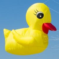 Rubber duck 75cm