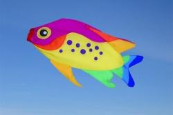 Rainbow Damsel Fisch Windsack