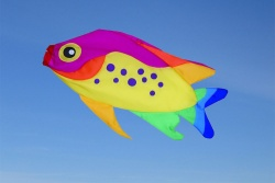 Rainbow Damsel Fish Windsock