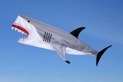 Shark Fisch Windsack