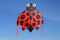 SkyBugz Kites Ladybug