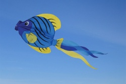 Striped Angel Fish Windsock