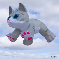 Tabby Kitten grau | 8ft.