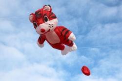 Small Tiger Kite