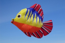 Tropical Fish Kite 300cm