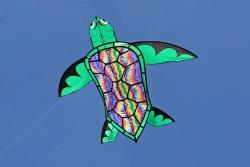 10 ft. Turtle