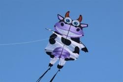 Wiggle Cow
