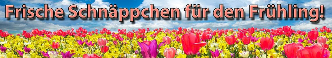 Frühlings-Schnäppchen
